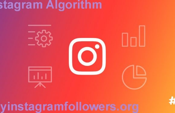 Instagram Algorithm and its New Feature