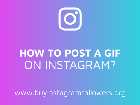 How to Post a GIF on Instagram? (Detailed Guide – 2019)