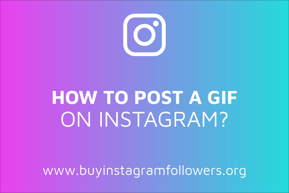 How to Post a GIF on Instagram? (Detailed Guide – 2020)
