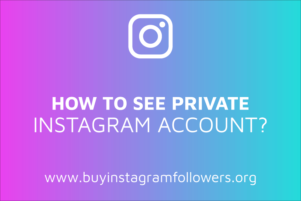 How to See a Private Instagram Account? (Make Yours Safer)