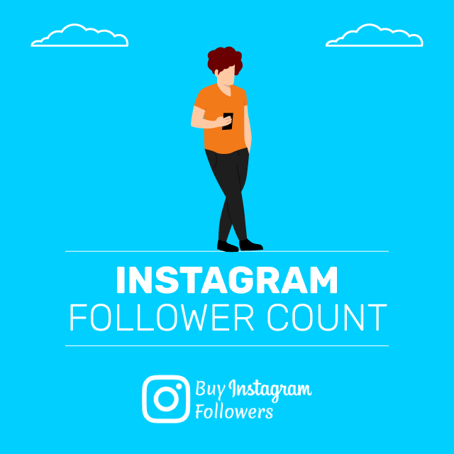 Instagram Follower Count